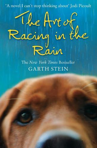 The Art of Racing intheRain