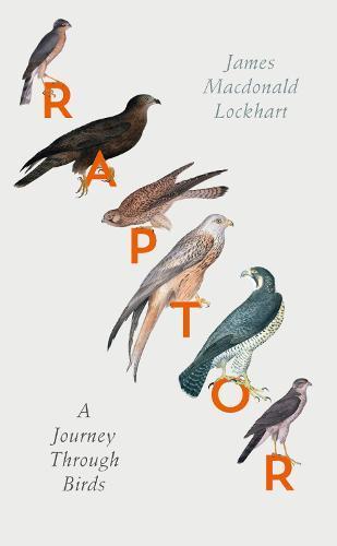 Raptor: A JourneyThroughBirds