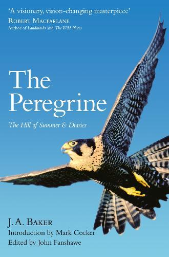 The Peregrine: The Hill of Summer & Diaries: the Complete Works of J.A.Baker