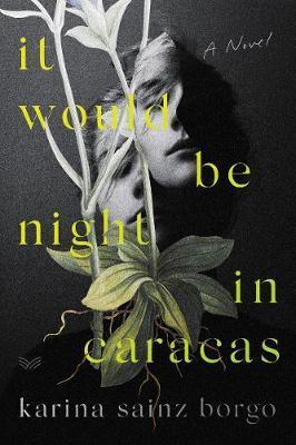 It Would Be NightInCaracas