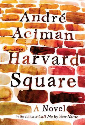 Harvard Square:ANovel