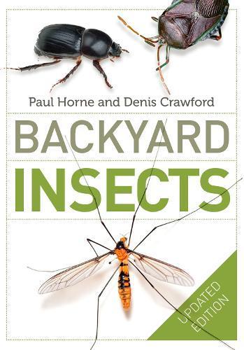 Backyard InsectsUpdatedEdition