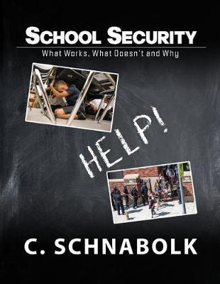 School Security: What Works, What Doesn't and Why