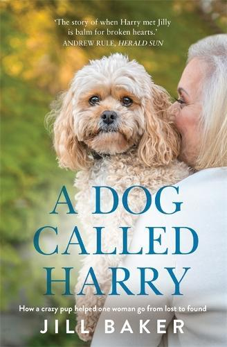 A Dog Called Harry