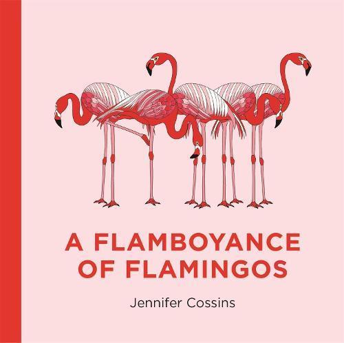 A FlamboyanceofFlamingos