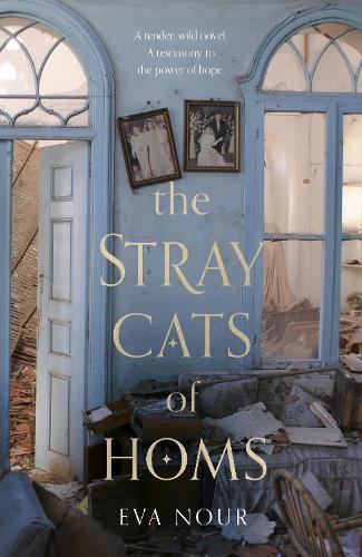 The Stray CatsofHoms