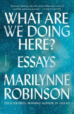 What Are We DoingHere?:Essays