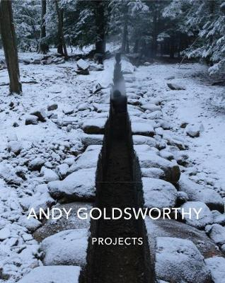 AndyGoldsworthy:Projects
