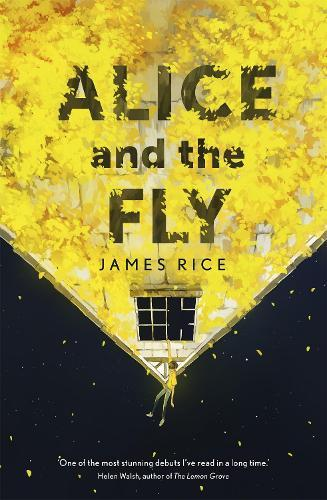 Alice and the Fly: 'a darkly quirky story of love, obsession and fear' Anna James
