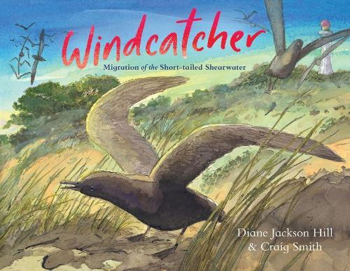 Windcatcher: Migration of the Short-tailed Shearwater