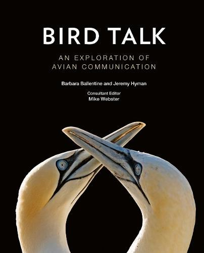 Bird Talk: An Exploration ofAvianCommunication