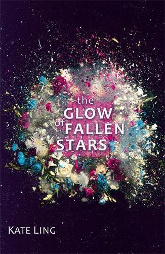Ventura Saga: The Glow of Fallen Stars:Book2