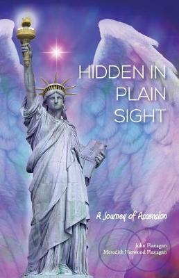 Hidden in Plain Sight: A JourneyofAscension