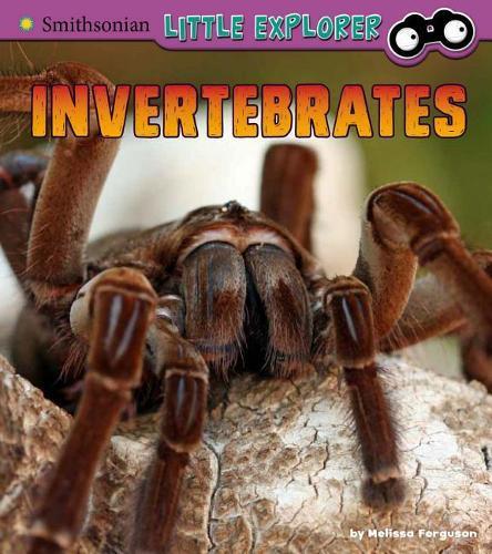 Invertebrates: a 4D Book(LittleZoologist)