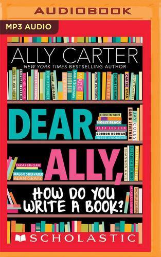 Dear Ally, How Do You WriteaBook