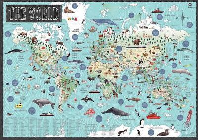 World: Illustrated Map