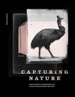 CapturingNature