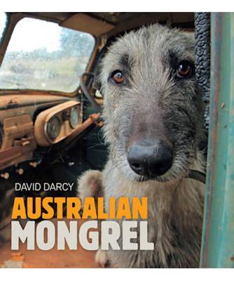 AustralianMongrel