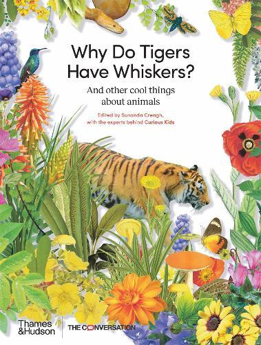 Why Do Tigers Have Whiskers?