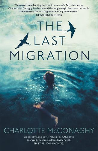 TheLastMigration