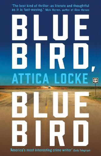 Bluebird,Bluebird