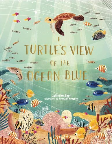 A Turtle's View of theOceanBlue
