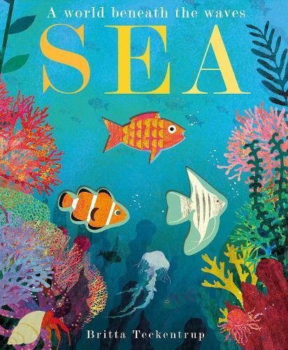 Sea: A World BeneaththeWaves