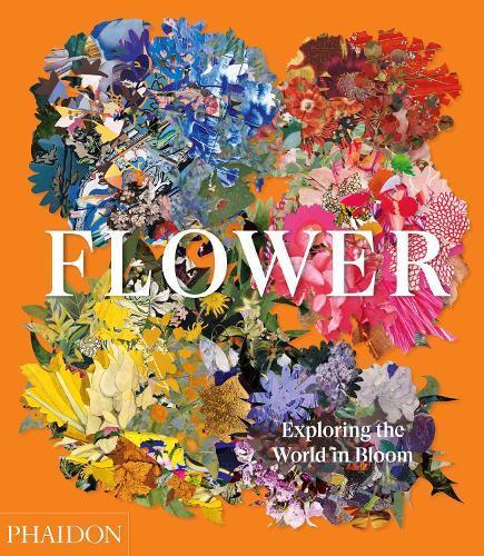 Flower: Exploring the WorldinBloom