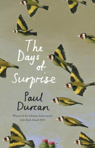 The DaysofSurprise