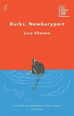 Ducks,Newburyport