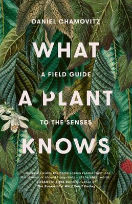 What a Plant Knows: A Field Guide to the Senses (Revised Edition)