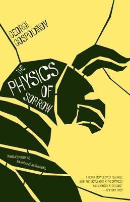 The PhysicsOfSorrow