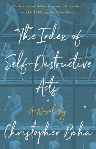 The Index ofSelf-DestructiveActs