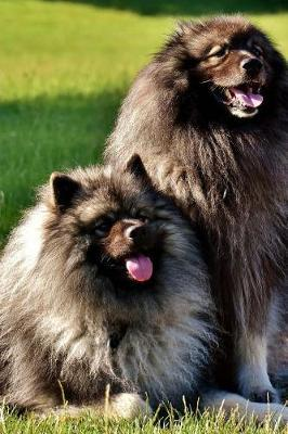 A Pair of Long Haired Keeshond Dogs Journal: Take Notes ...