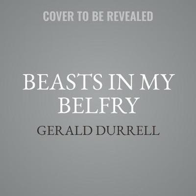 Beasts in MyBelfryLib/E