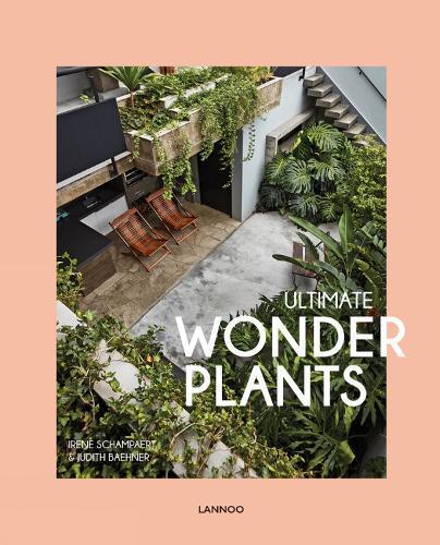 Ultimate Wonder Plants: Your UrbanJungleInterior
