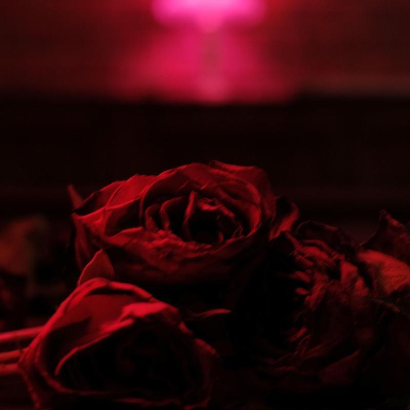 Roses (Vinyl)