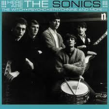 Here Are TheSonics(Vinyl)