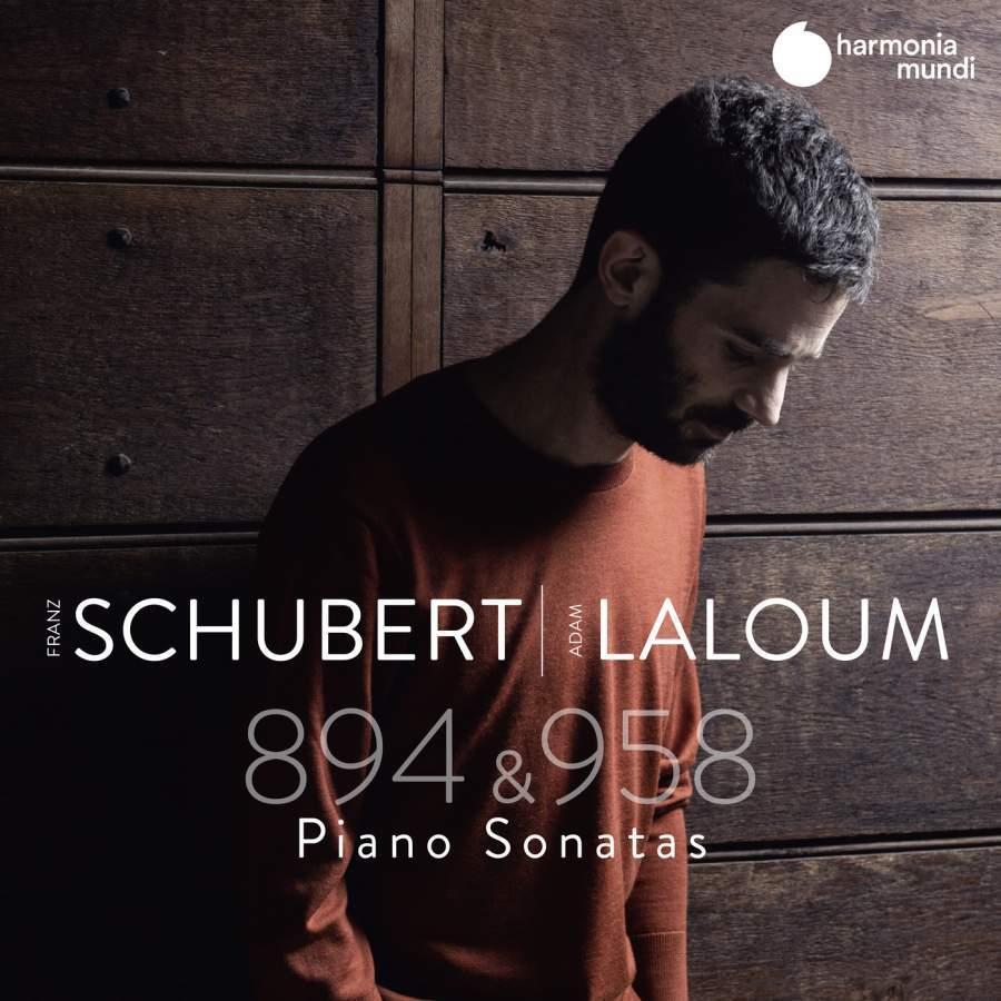 Schubert: Piano Sonatas D958&D894