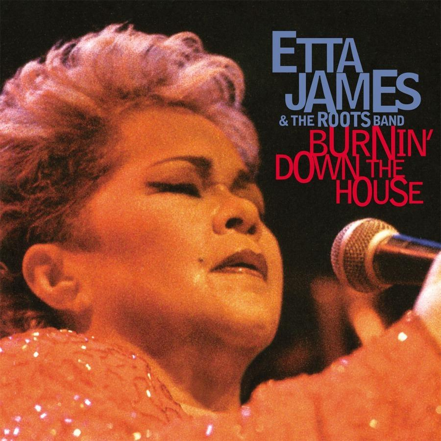 Burnin' Down theHouse(Vinyl)