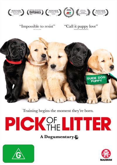 Pick of the Litter (DVD)