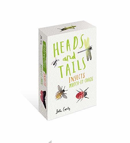 Heads And Tails Insects Match It Cards