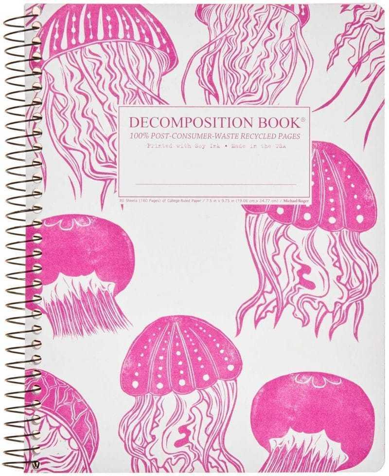 Decomposition Notebook Jellyfish
