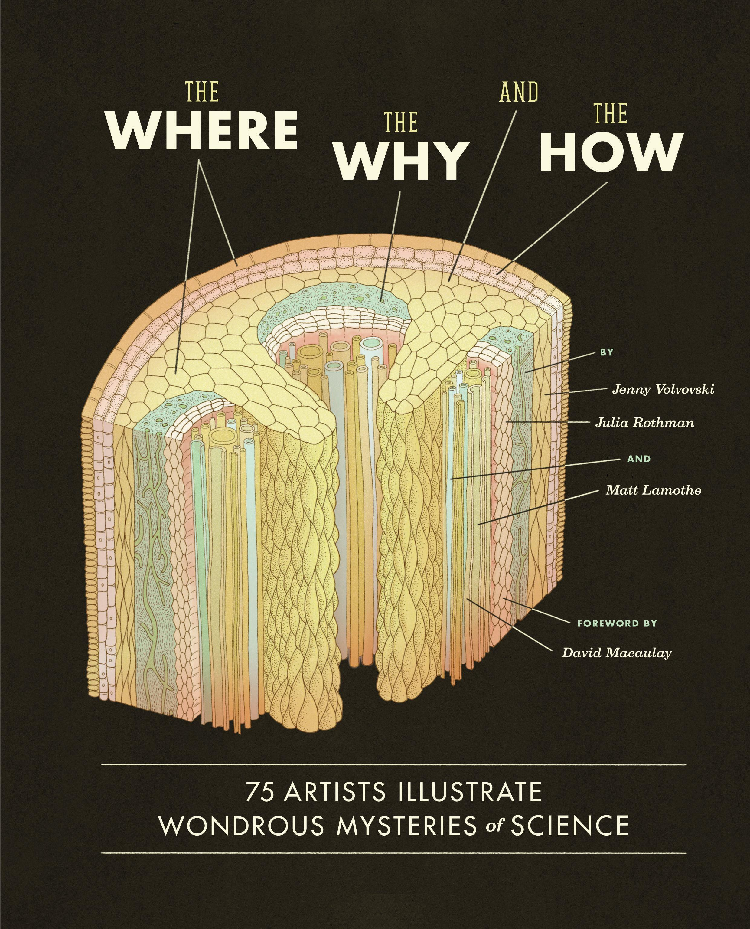 The Where, the Why, and the How: 75 Artists Illustrate Wondrous MysteriesofScience