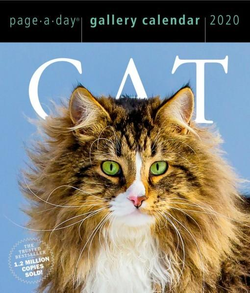 Cat: Page-a-Day GalleryCalendar2020