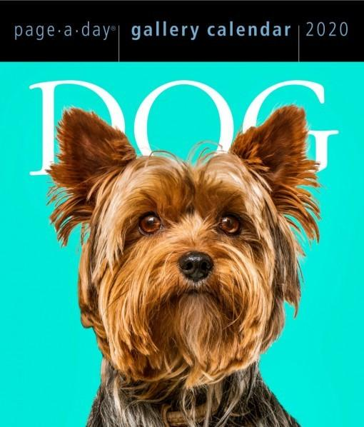 Dog: Page-a-Day Gallery Calendar 2020