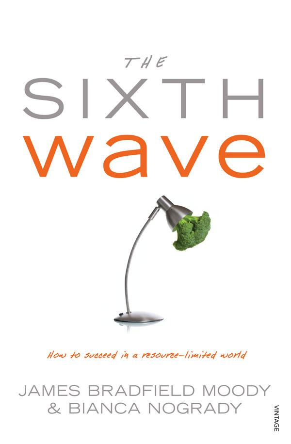 The Sixth Wave: How to Succeed in aResource-LimitedWorld