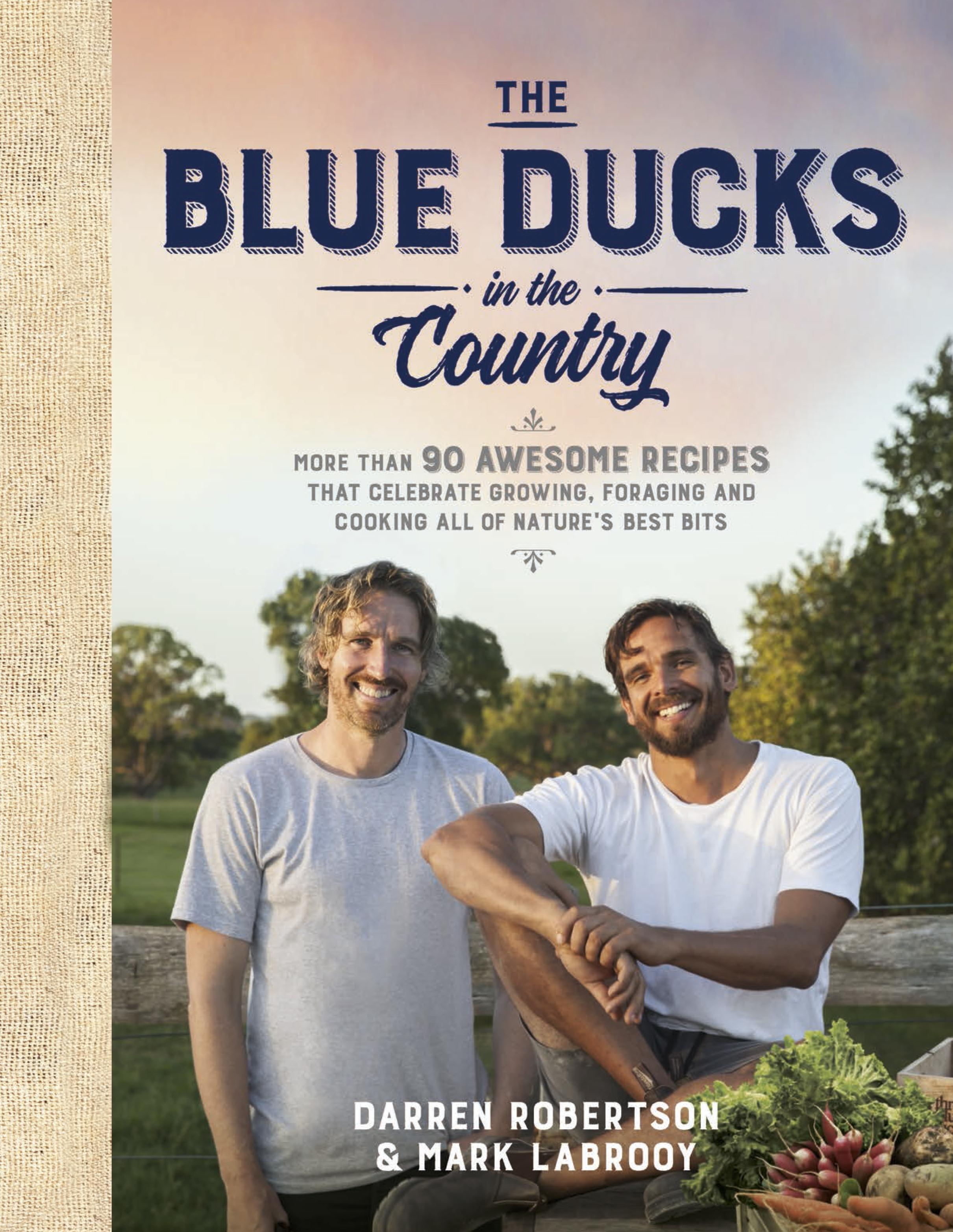 The Blue Ducks intheCountry