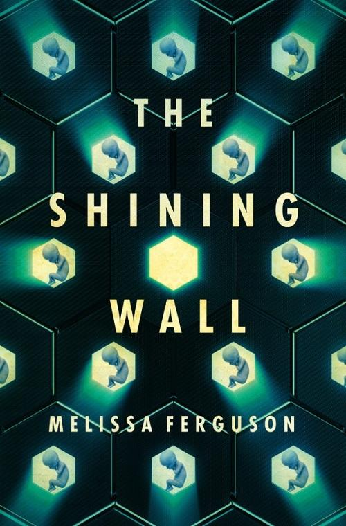 The Shining Wall